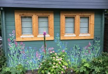 Sweet peas painted on a garden shed